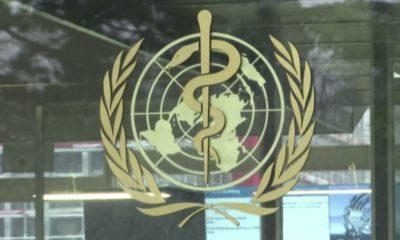 Gordon G. Chang: Trump right to stop funding World Health Organization over its botched coronavirus response