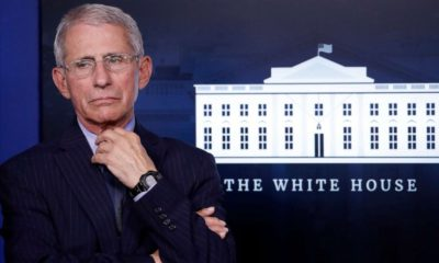 Fauci given security detail after threats: Source