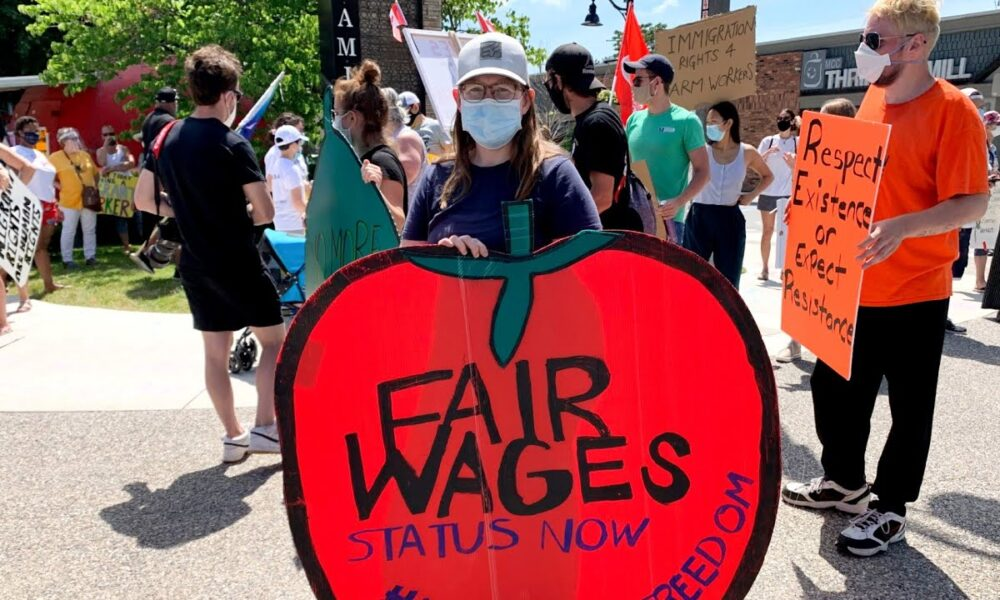 Marchers demand more protections for migrant workers after COVID-19 outbreaks on farms – CBC News