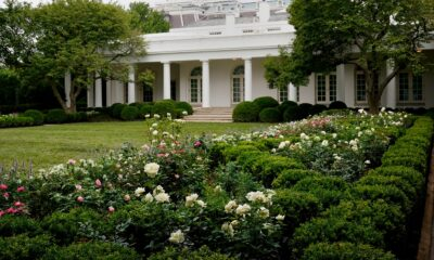 I never promised you a rose garden: Melania Trump's renovation of a national treasure