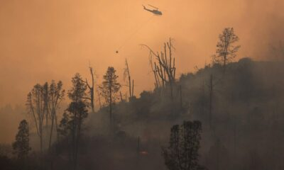 Weather gives firefighters relief battling California wildfires – Reuters Africa