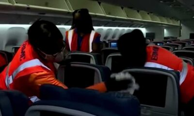 'Airplanes are cleaner than they've ever been': Airlines double staff for pit-stop deep cleans between flights